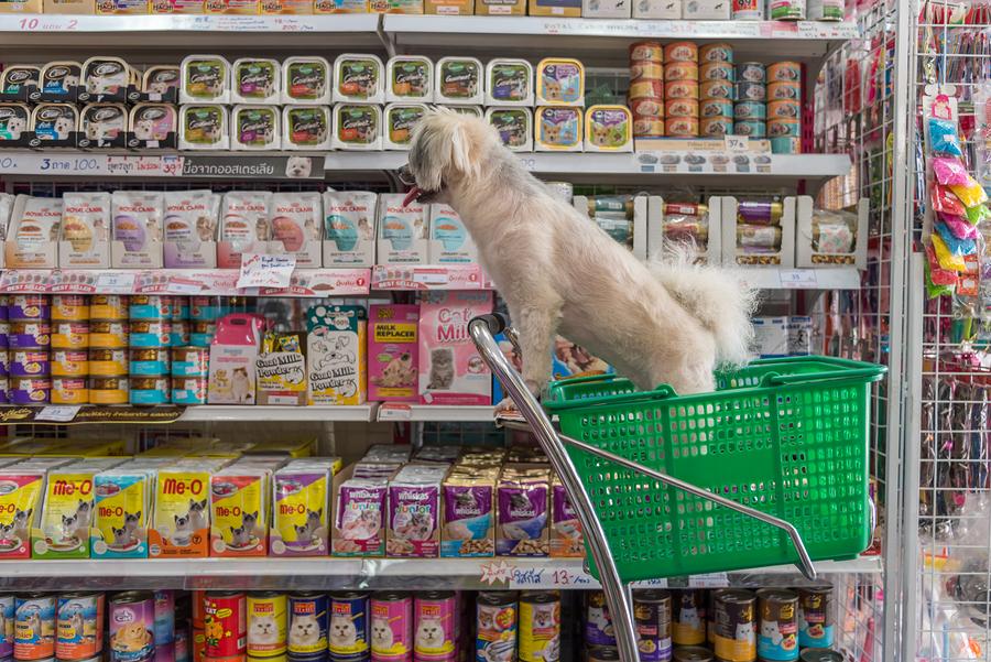 Einkauf Hundefutter ohne Getreide