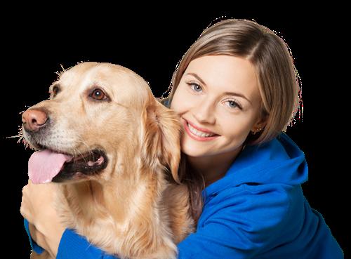 Erziehungshilfen für Hunde