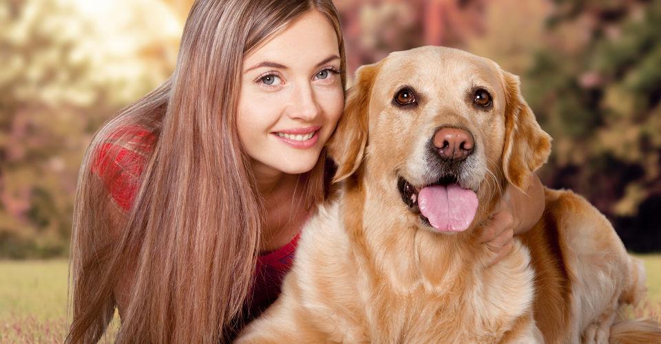 Antibell-Halsband: Hundegebell?´ Wir zeigen, wie Sie ihren Hund erziehen!