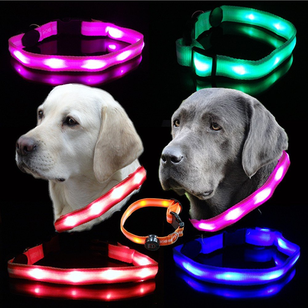 Leuchthalsband LED Blinkhalsband für Hunde