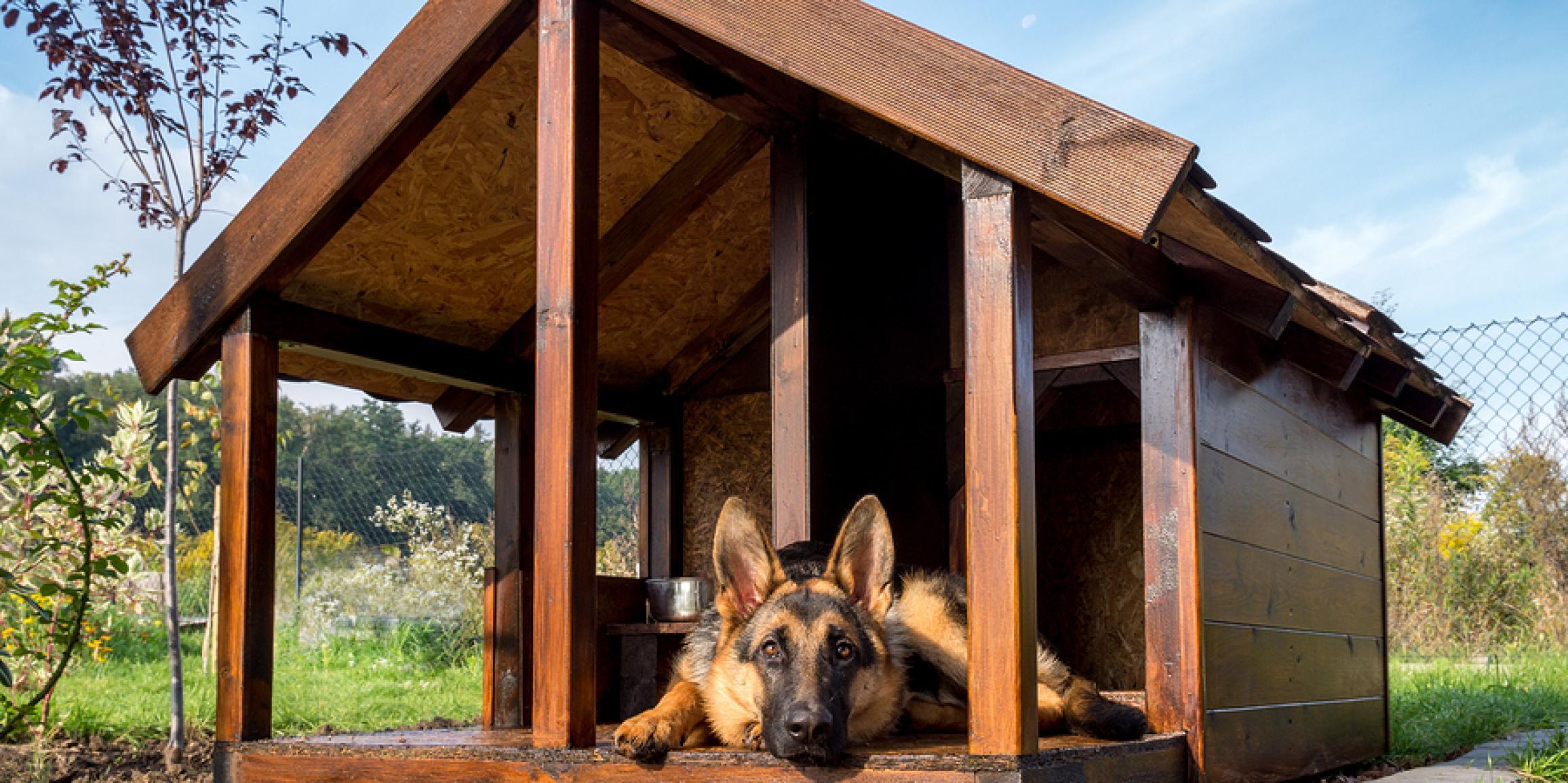 Extrem Hundehütte Bausatz - Schicke Hütten für den Hund bauen - Antibell GE49